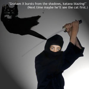 'Graham X bursts from the shadows, katana blazing!' (Next time maybe he'll see the cat first.)