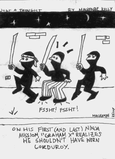 On his first (and last) ninja mission, 'GRAHAM X' realizes he shouldn't have worn corduroy.